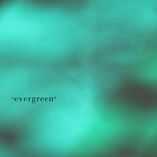 "E&Y  30th Anniversary Exhibition  ""evergreen"""